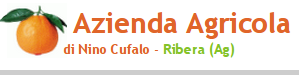 Azienda Agricola Nino Cufalo