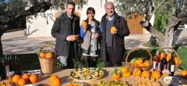 Aranciate col 20% di succo di arancia, il giubilo del senatore Ruvolo (FI)