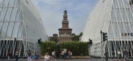 EXPO Milano: gli agrumi siciliani Dop e Igp a Milano con il Distretto degli Agrumi di Sicilia