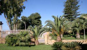 scorcio-giardino-botanico-2-copia